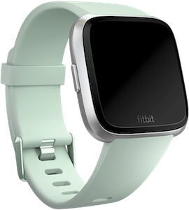 Fitbit Versa Classic Band Mint