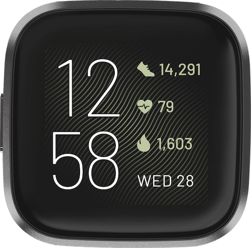 Fitbit Versa 2 Carbon Watch Case