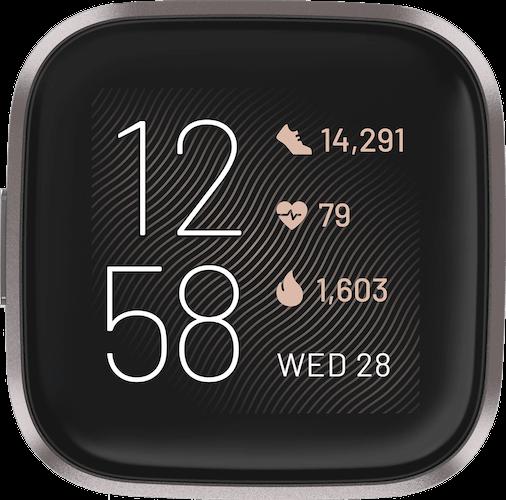 Fitbit Versa 2 Mist Gray Watch Case